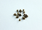 RX504 Reflex Racing GL RGT Brass Screw Kit (20 pcs M2x4CS screws)